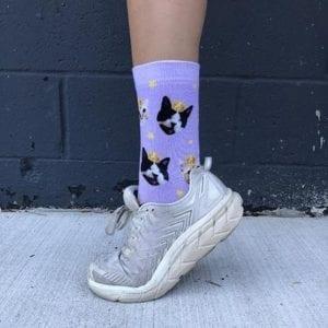 photo of our custom cat socks